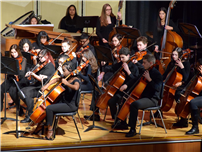 Deer Park's Stellar Music Program Earns Another NAMM Award